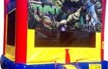 Ninja Turtles Module