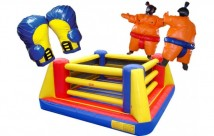 Boxing Ring Castle