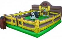 Premium-Bull-Corral-Bed-scoreboar-683x420