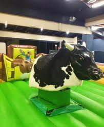 hire mechanical bull