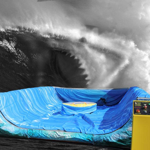 surfy1